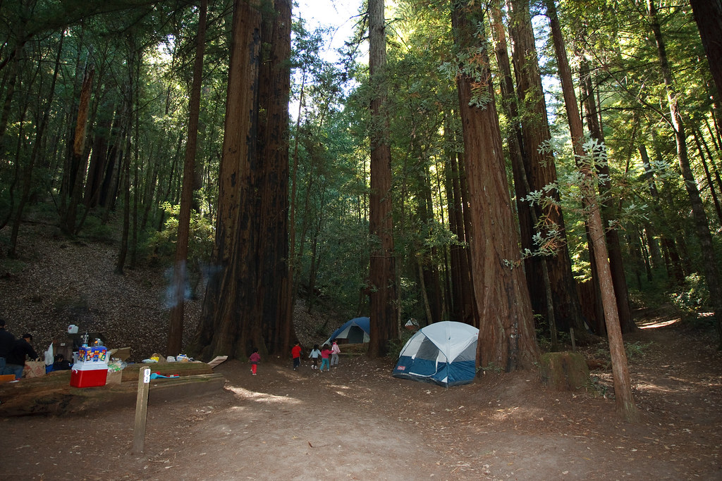 Big Basin  Wastahi Campground  Campsites  Heres what