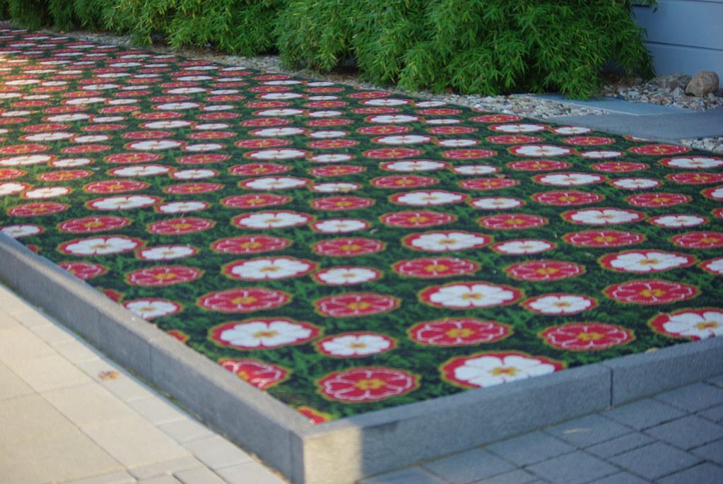 pflegeleichte vorgarten | balcon, Gartenarbeit ideen
