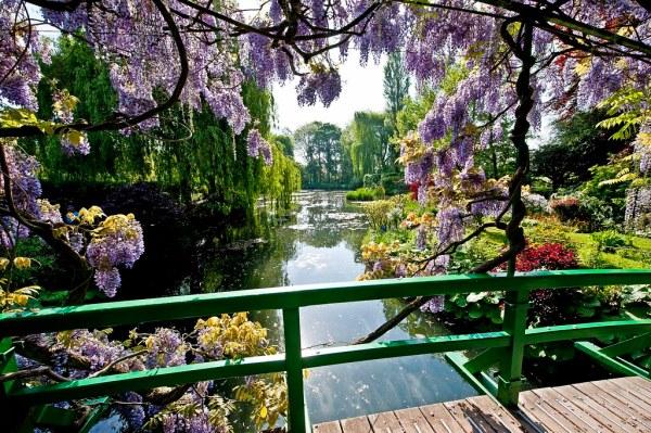 Image result for Monet garden, Giverny, France