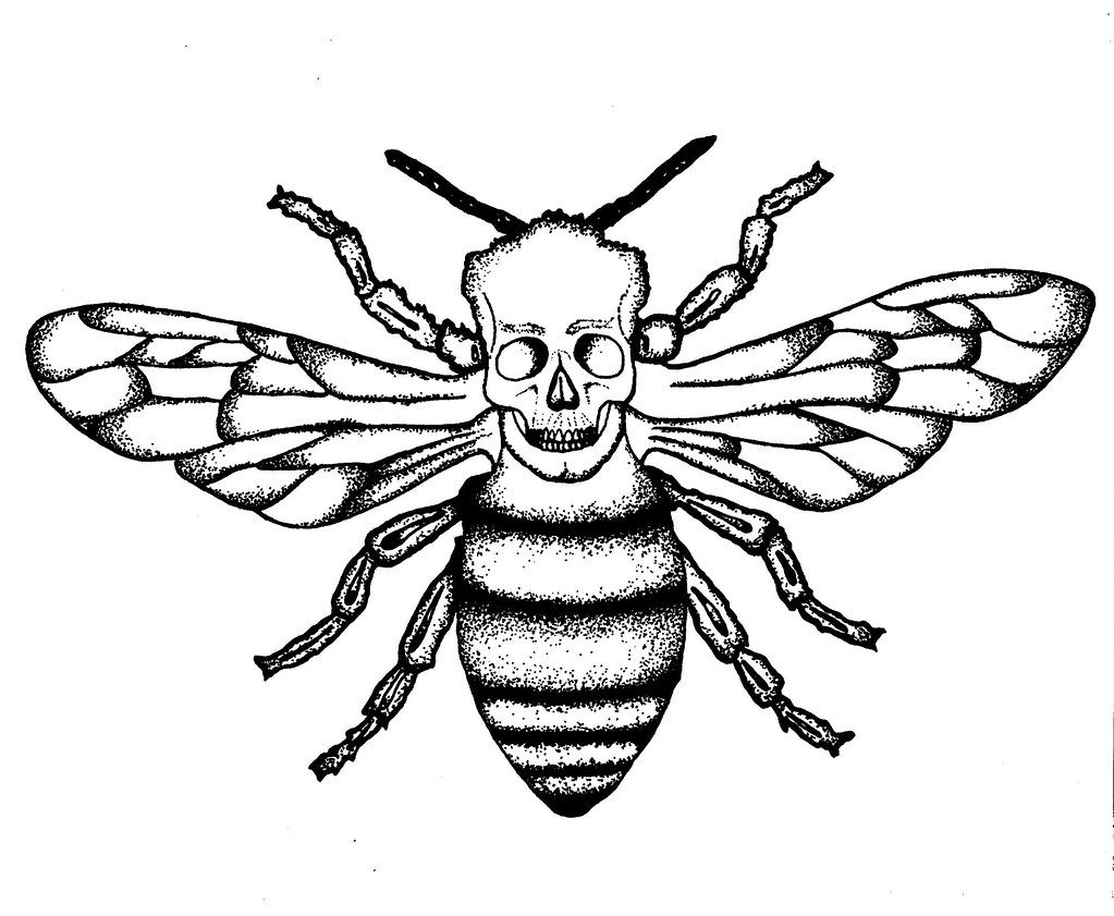 Killer Bee Insect Drawing