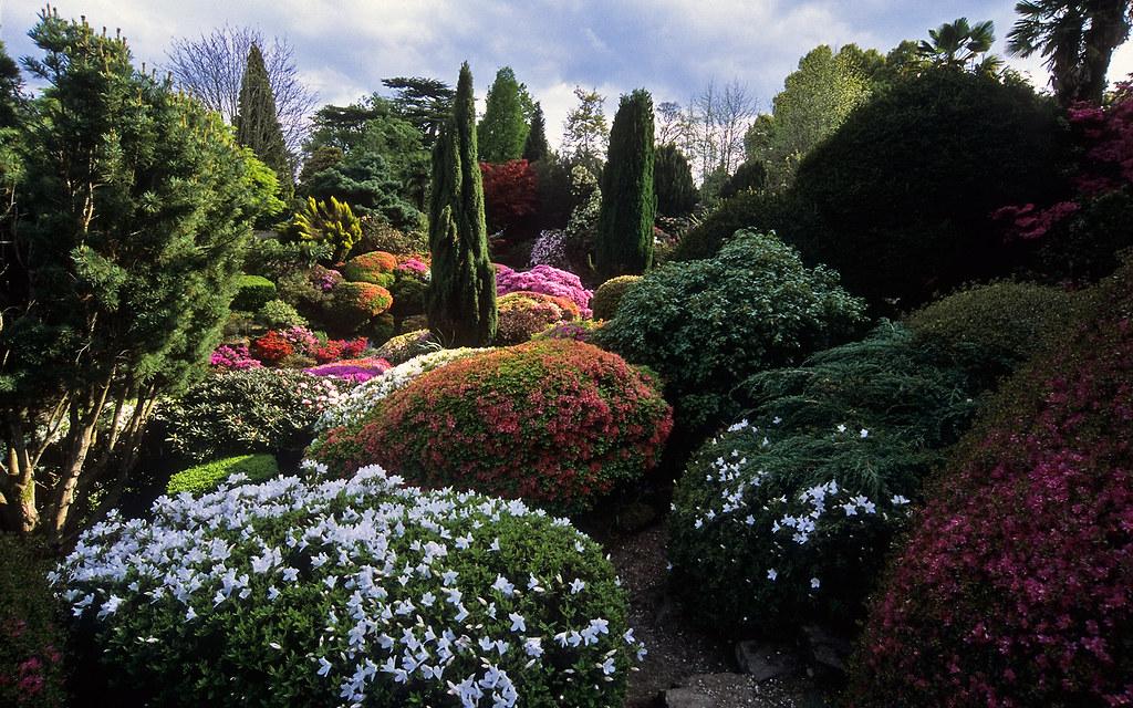 Leonardslee Gardens West Sussex England UK  Leonardsle