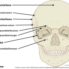 Human Skull Diagram Without Labels Sony Head Unit Wiring Diagram, Anterior View With Part 1 - Axial Sk…   Flickr