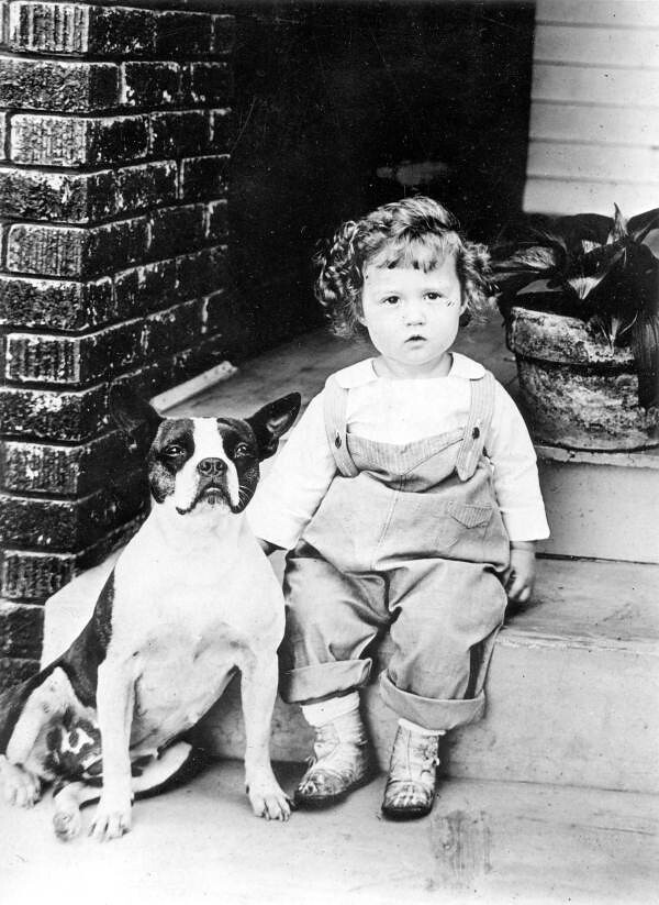 Little Boy And A Boston Bulldog Local Call Number