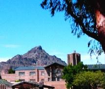 Hot Phoenix Arizona Biltmore 2 Sharon Picking