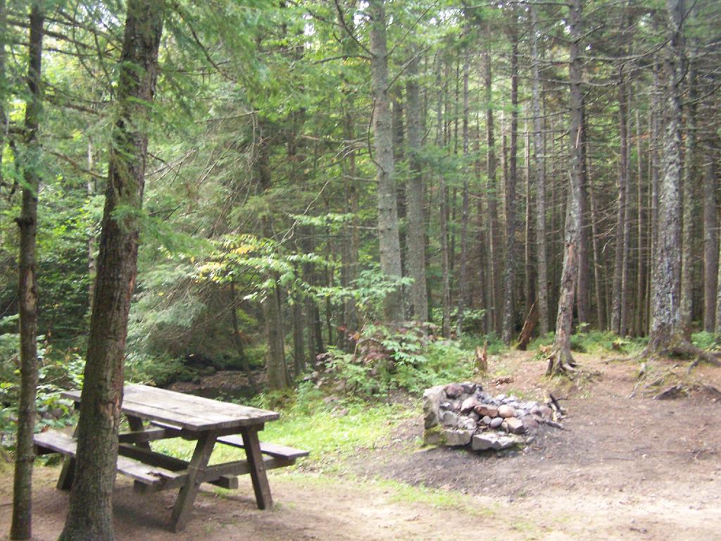 Campsite 2 Closer Up at Moose River Plains This is campsi