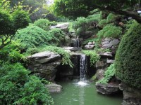 Japanese Garden | The waterfall in the Japanese Hill-and ...