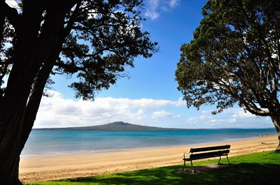 Narrow Neck Beach | This is a view in July from Narrow ...