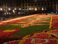 Brussels' Flower Carpet | barbiez | Flickr