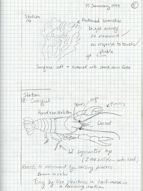 Submission #2: Composition Book Inverterate Biology