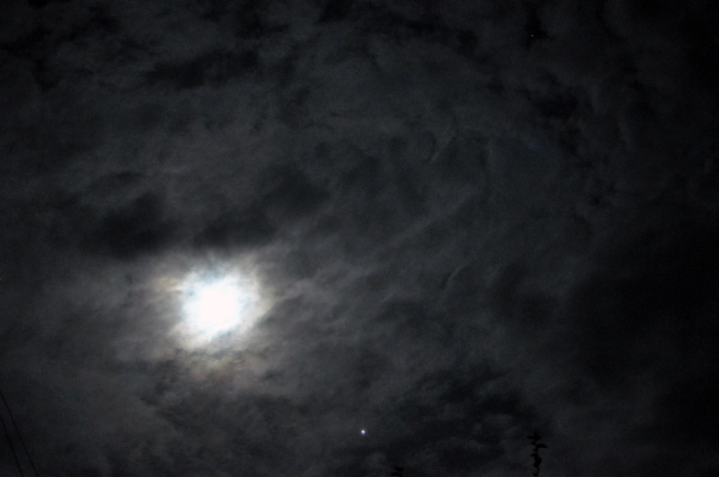 Night sky texture  Ilya  Flickr