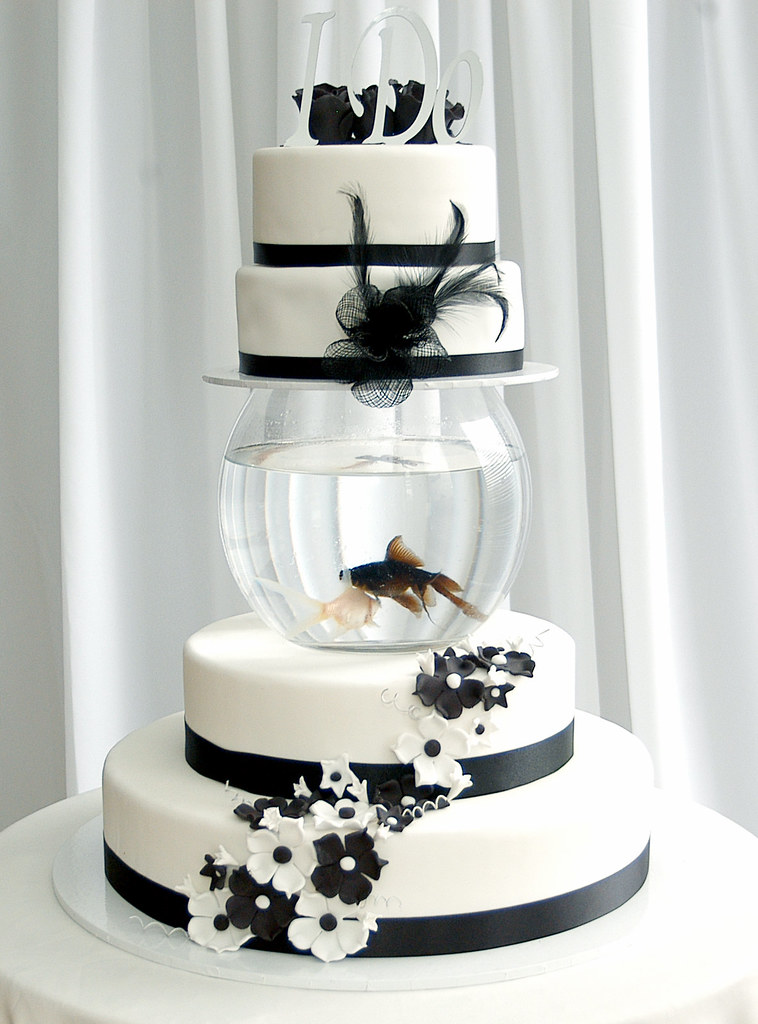 Black Amp White Fish Tank Wedding Cake This Is A Cake I