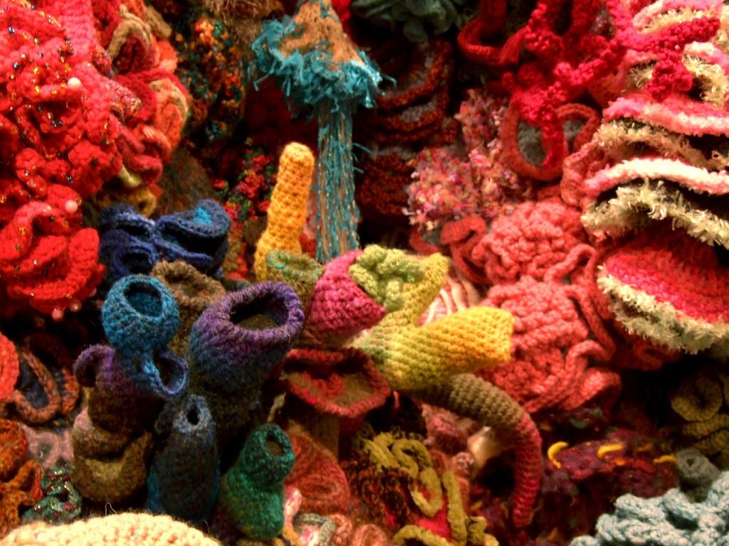 Crochet Coral Reef  Hyperbolic Crochet Coral Reef exhibit