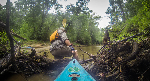 Long Cane Creek with Lowcountry Unfiltered-23