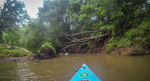 Long Cane Creek with Lowcountry Unfiltered-45