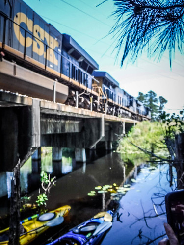 Old Santee Canal-146