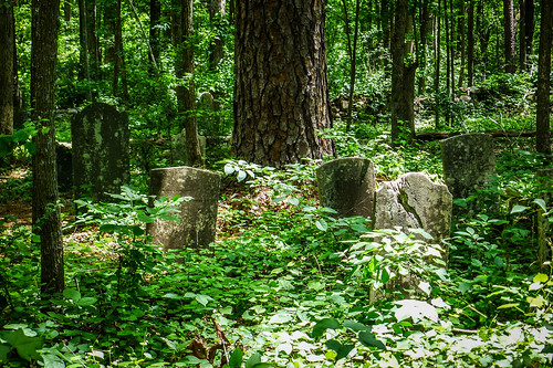 Old Stone Cemetery at Landsford Canal-051