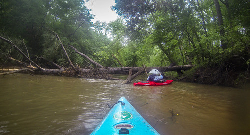 Long Cane Creek with Lowcountry Unfiltered-20
