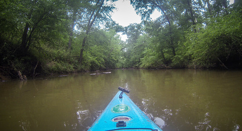 Long Cane Creek with Lowcountry Unfiltered-16