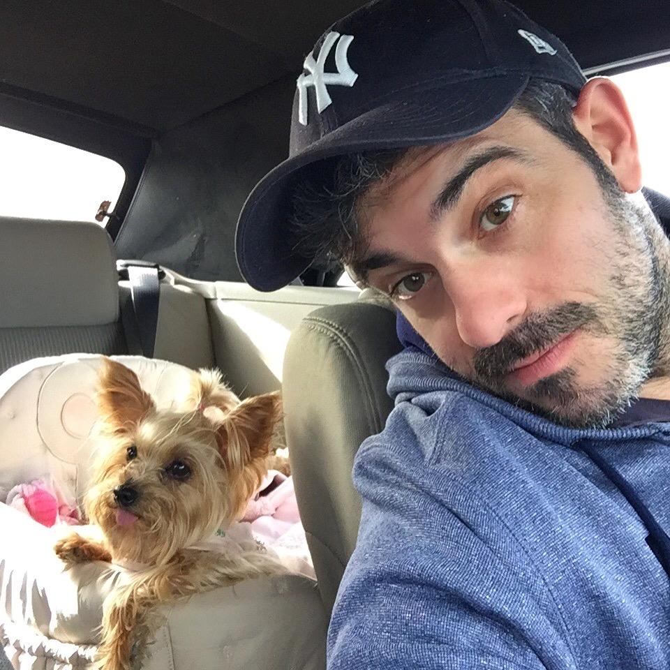 Viajar a Paris con Perro - Travel to Paris with dog viajar a paris con perro Viajar a Paris con perro 34560000236 d663a91502 o