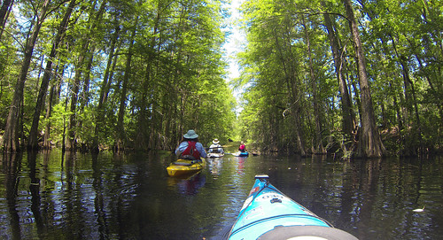 Old Santee Canal-116