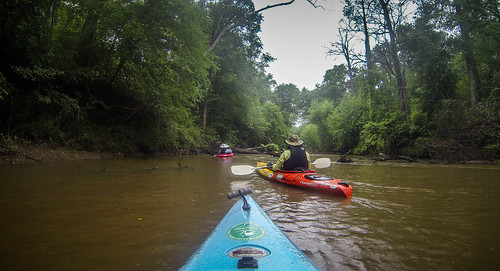 Long Cane Creek with Lowcountry Unfiltered-26