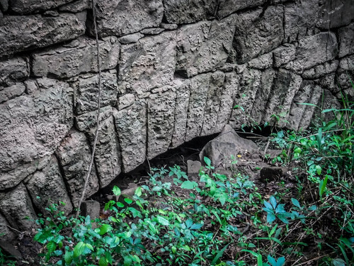 Bradley Mill on Long Cane Creek-009
