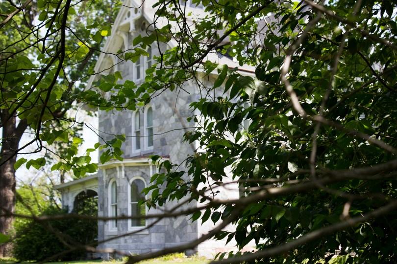 lockwood-mansion-trees
