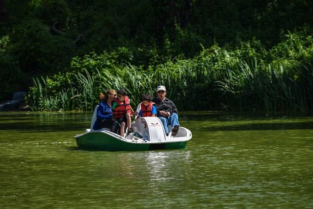 Stow Lake Boats