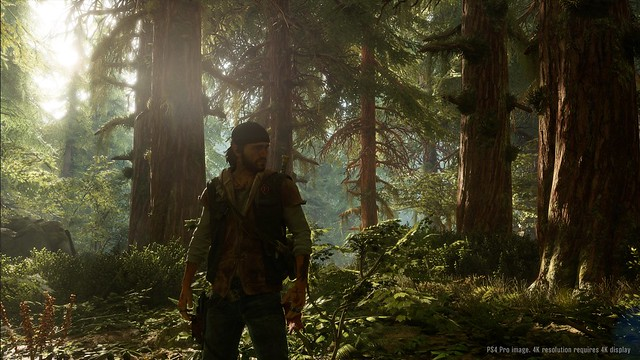 E3 2017: Days Gone Gameplay Walkthrough