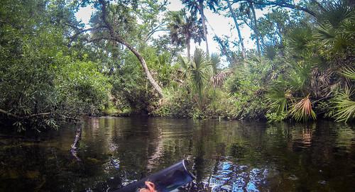 Juniper Springs Creek-4