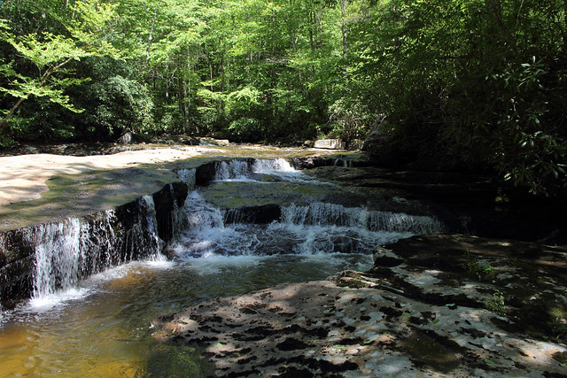20170603_Tea_Creek_Wilderness_014
