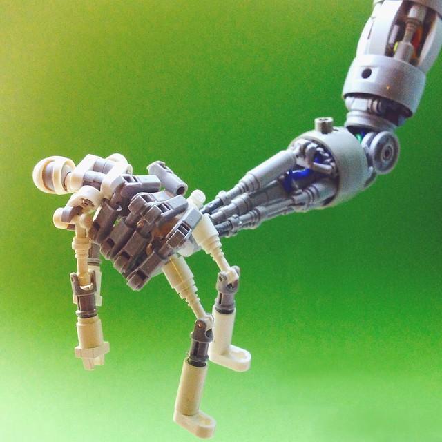 Robot and Robot
