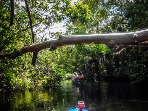 Juniper Springs Creek-104