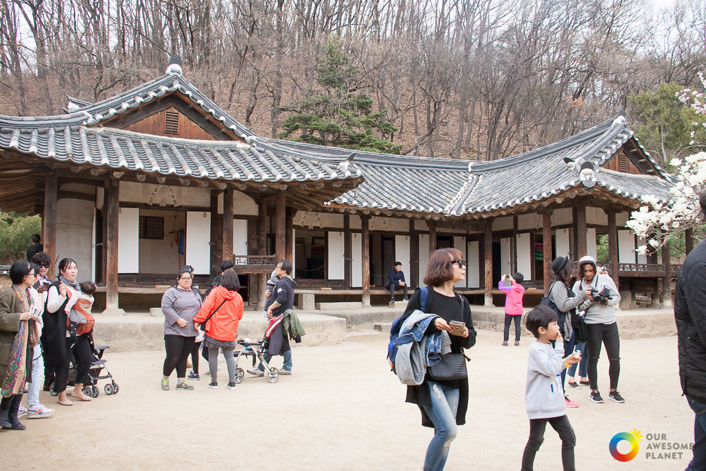 Korea Gangwon Fam Tour (Last Day)
