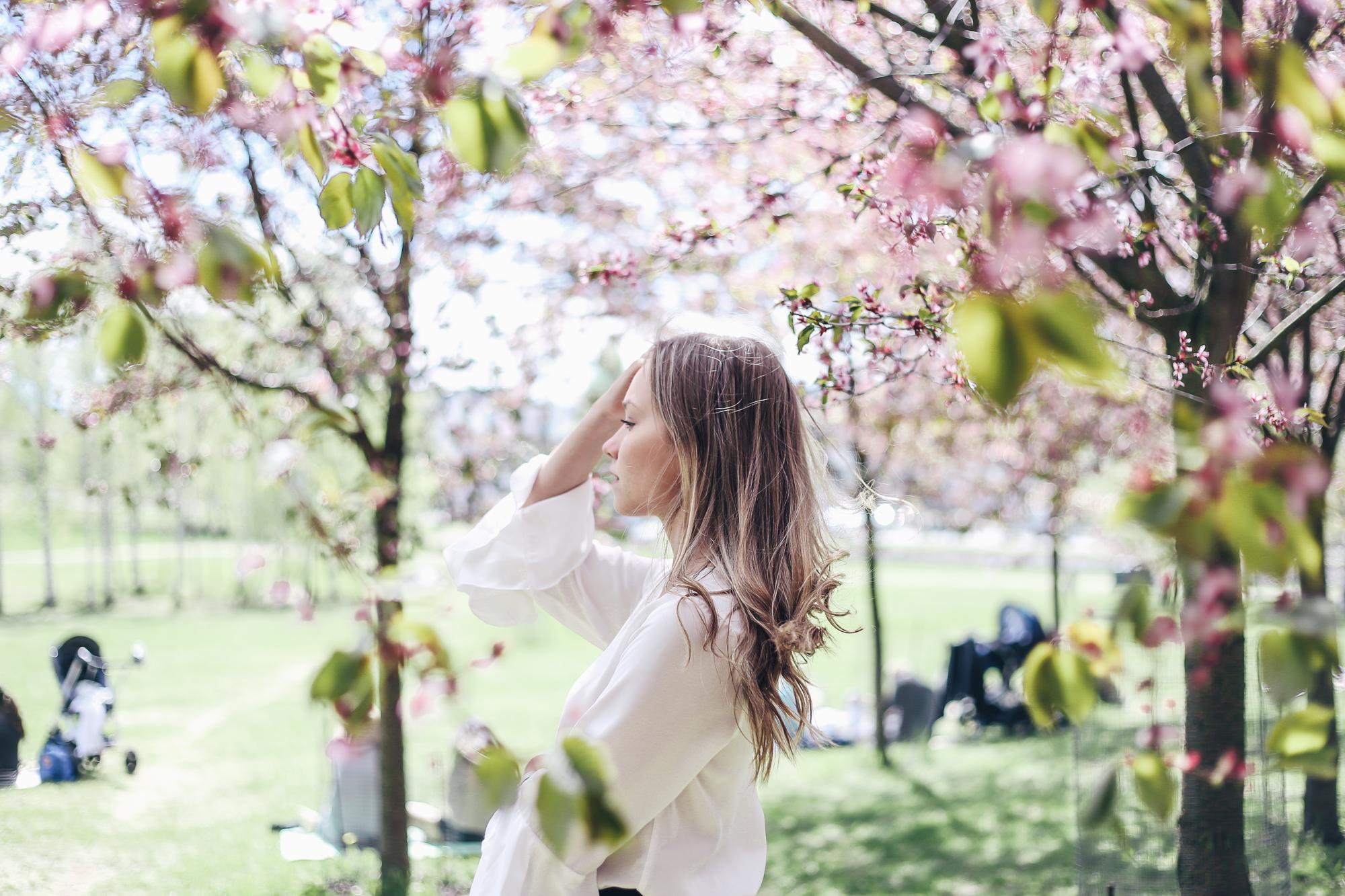 kirsikankukkia1-3