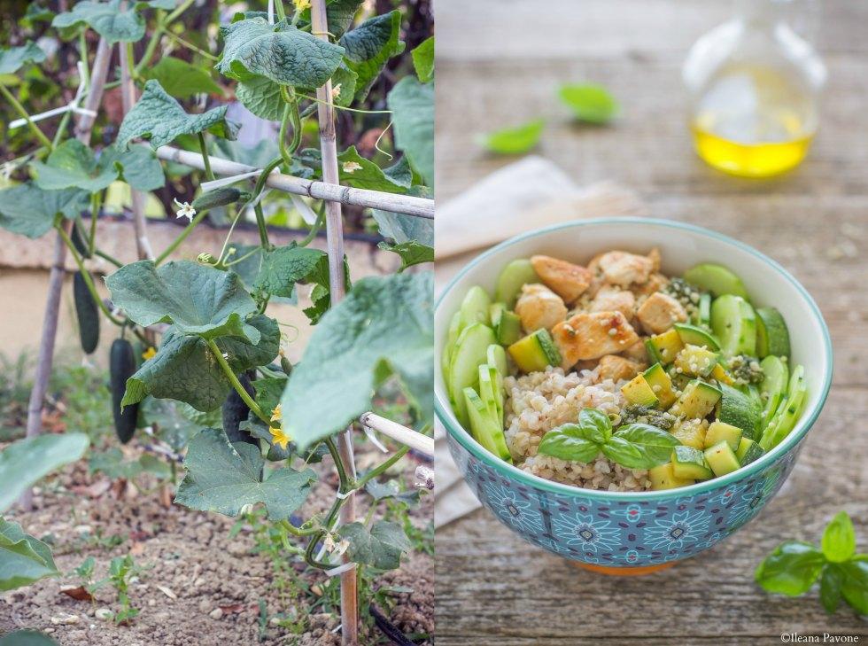 Bowl di grano saraceno e pollo_2