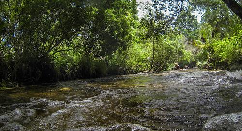 Juniper Springs Creek-70