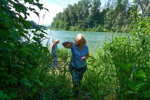 Skagit River-002