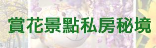 文末圖片賞花