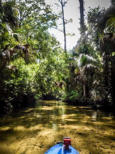 Juniper Springs Creek-102