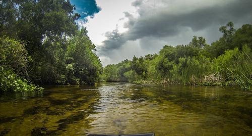 Juniper Springs Creek-85