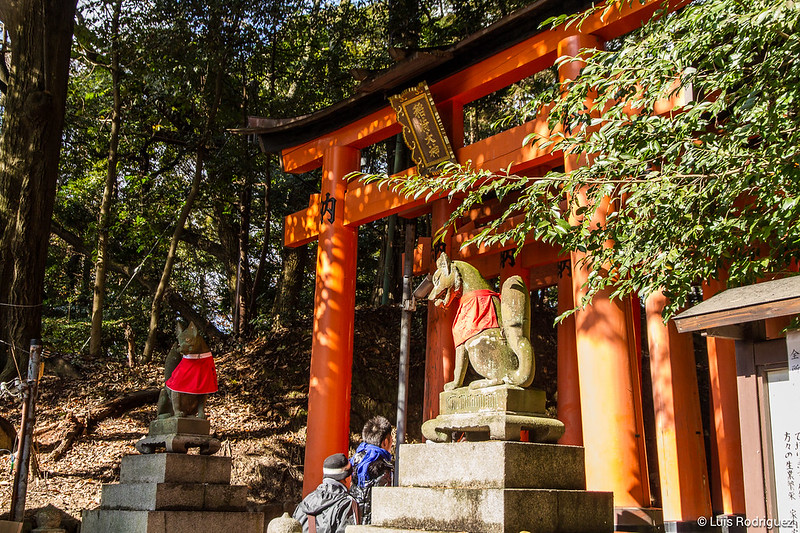 Fushimi-Inari-68