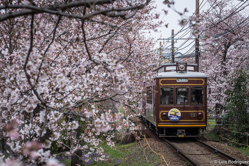 Trenes-Japoneses-120