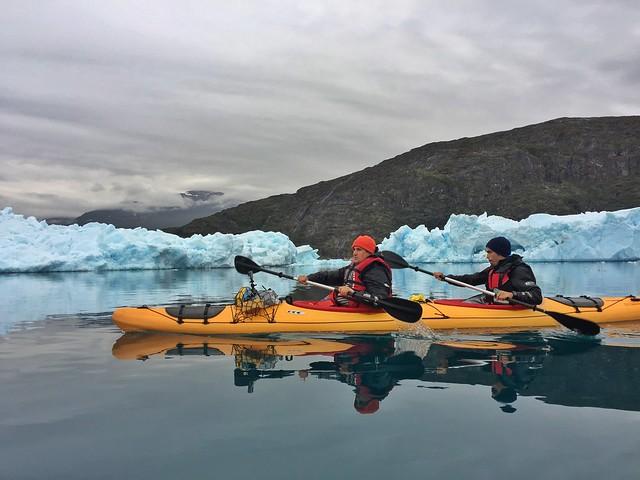 Sele haciendo kayak en el sur de Groenlandia