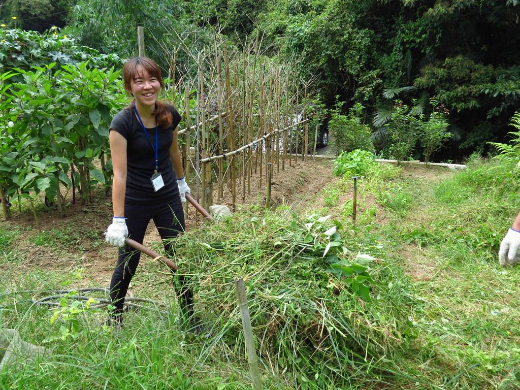 9/16熱血生態工作假期。用汗水感受農村三生 - 臺灣環境資訊協會
