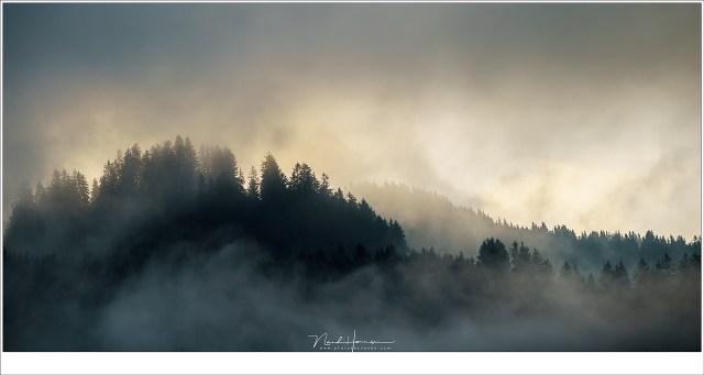Ochtendmist in de bergen, Hoog boven het dal in Kirchberg (Sony A9 + FE100-400mm @ 312mm | ISO400 | f/11 | 1/320)