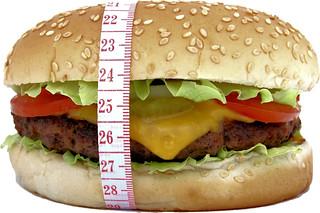 Big hamburger for big appetite, beef, bread, bun, burger, calories, cheese