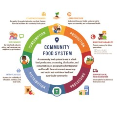 Explain The Process Of Nutrition In Amoeba With Diagram Cj7 Wiring Community Food System Infographic Purpose Farm To