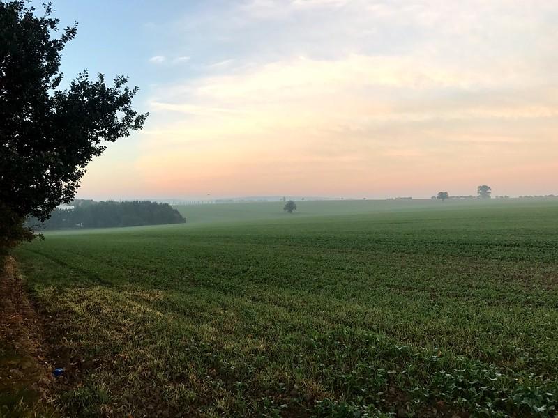 dawn in wide fields near dresden in germany