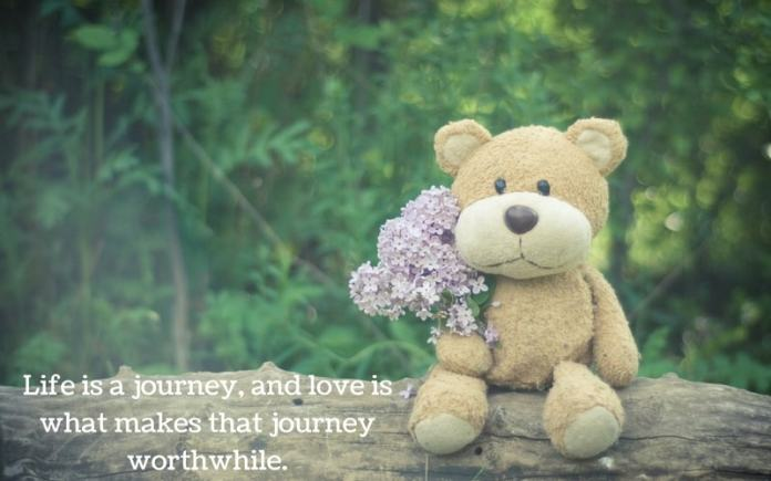 teddy day 2019 quotes and wishes